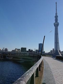 sumidagawa2018-052.jpg