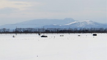 to-the-north-208.jpg