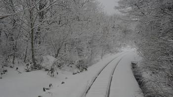 winterreise2018-211.jpg